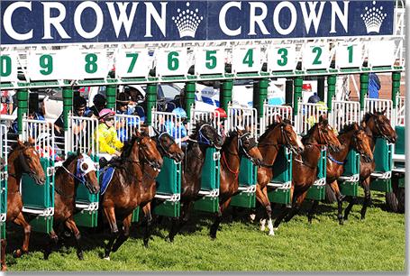 Crown Oaks