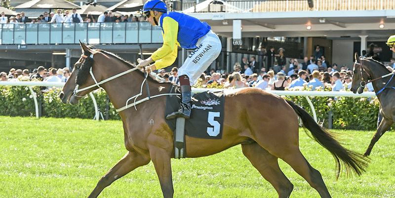 Le Romain wins the cantala stakes