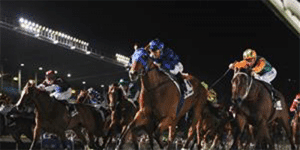 AJ Moir stakes betting 2017