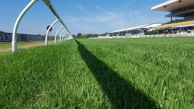 Rosehill Track