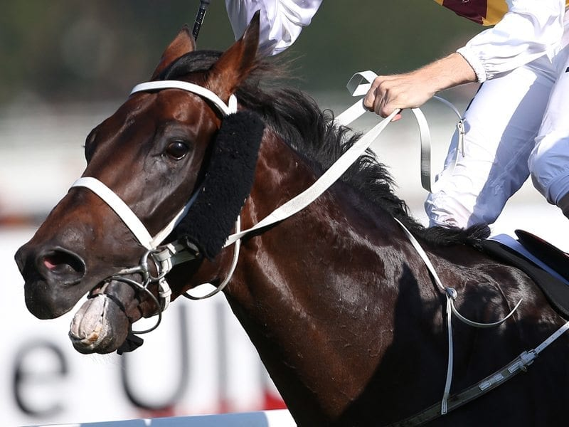 Jumps sessions to switch on Preferment