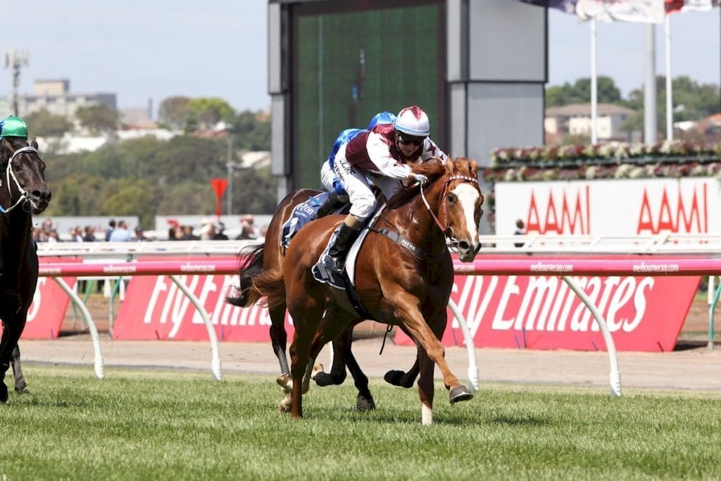 Victoria derby day 2016 form guide: odds, tips, start tv times.