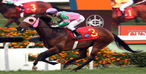 HK Sprint