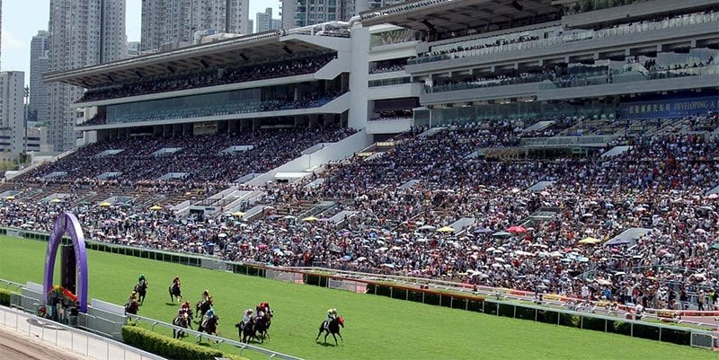 Sha Tin races