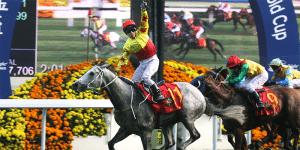 Hong Kong Cup betting Australia