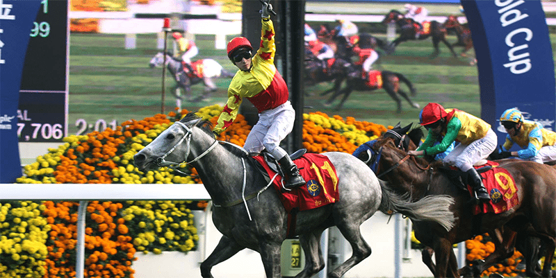 Hong Kong Cup betting Australia