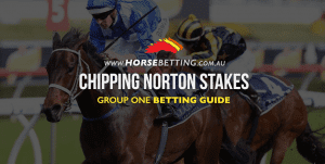 chipping norton stakes