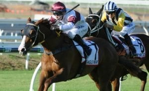 Eagle Farm tips and best bets for February 6, 2021
