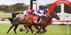 Erector wins at Sandown