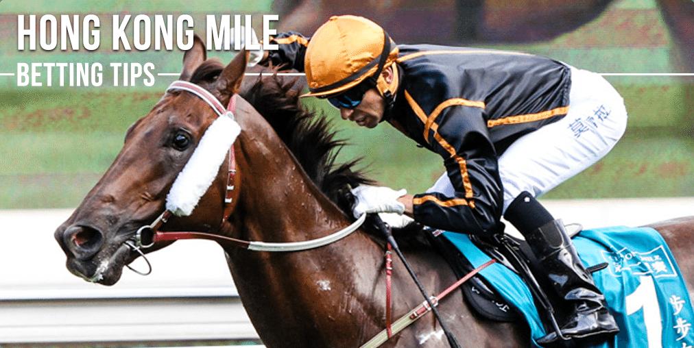 Hong kong horse racing betting guide nevada online sports betting