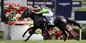 Satono Crown betting