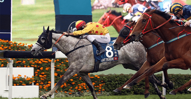 Giant Treasure wins the Stewards' Cup