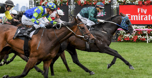 Odyssey Moon to race in New Zealand