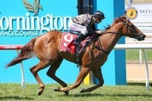 Mornington horse racing tips for Sunday April 4