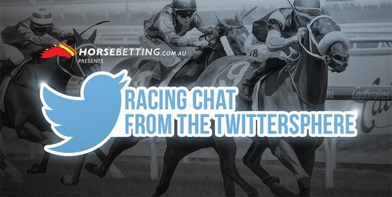 HorseBetting twitter chat