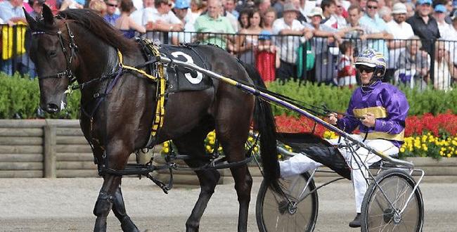 Fake horse race betting we love betting follow