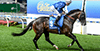 Holler Australia wins Canterbury Stakes