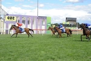 Gold Symphony wins in Canberra