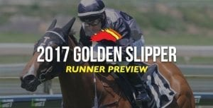 Slipper preview