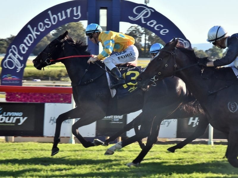 Shazee Lee wins at Hawkesbury