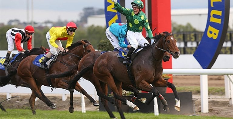 New Zealand Thoroughbred Breeders Stakes