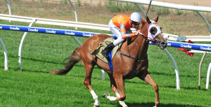 Burning Front wins at Wangaratta feature