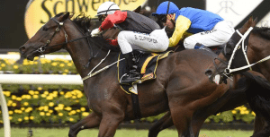 Sam Clipperton wins 2016 All Aged Stakes onboard English