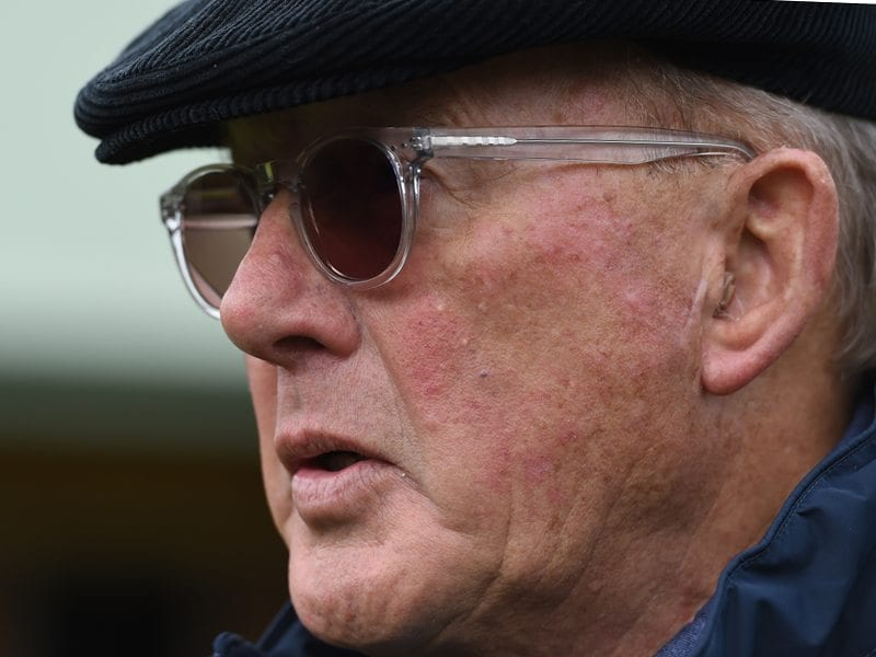 Owner Lloyd Williams