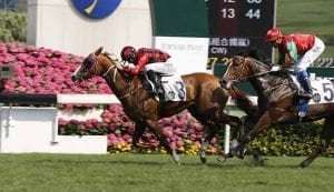 Eagle Way wins in Hong Kong