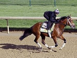 Kentucky Derby runner Patch