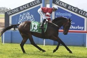 Lautaro wins at Scone