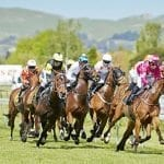 Challenge Stakes NZ