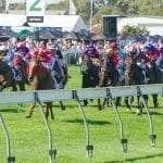 Goodwood Stakes