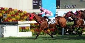 Lucky year wins Hong Kong Vase