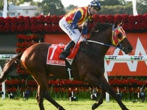 Louvre to fly in for Kingsford-Smith Cup