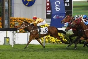 Gold Mount wins at Sha Tin