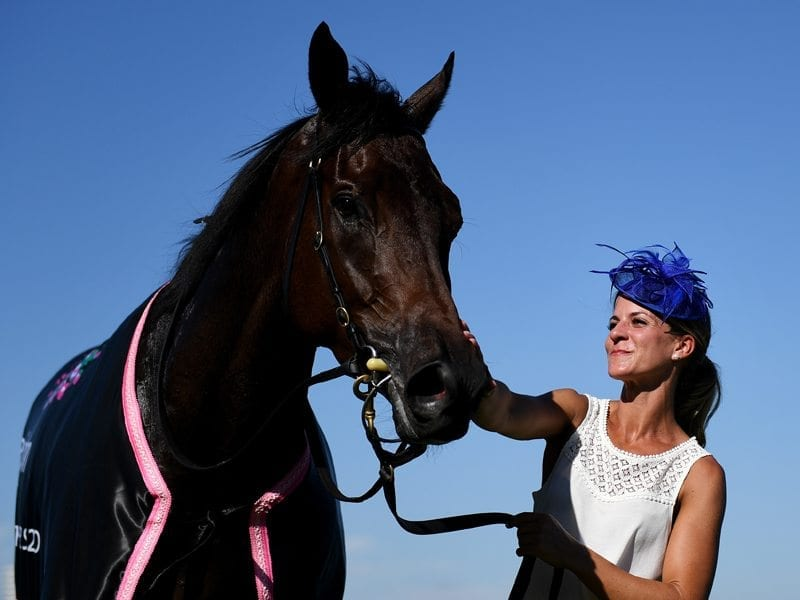 A strapper kisses Hey Doc after winning the Australian Guineas