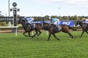 Balius wins at Canterbury