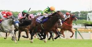 Hong Kong charge fails to impress in Group 1 Yasuda Kinen