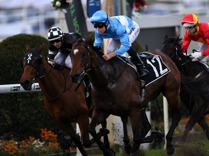 Jockey Tommy Berry rides Prompt Response