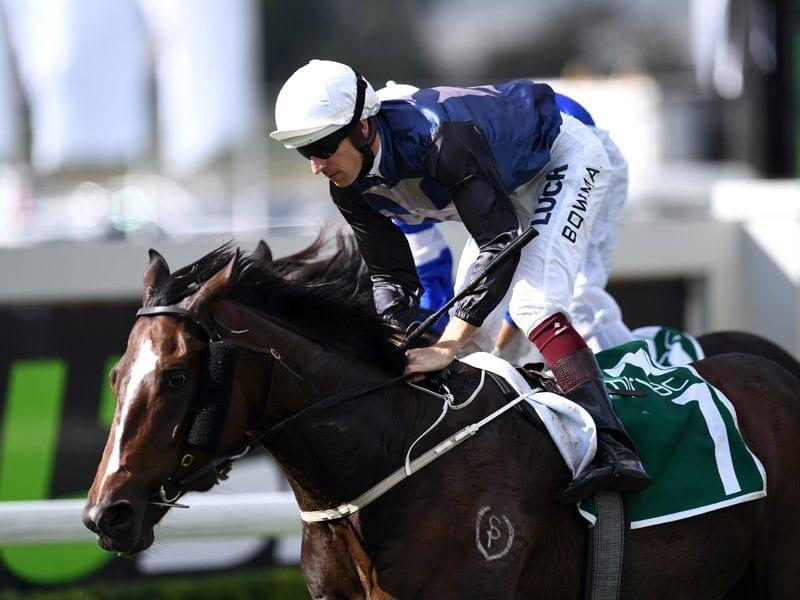 Jockey Hugh Bowman rides Salsonic