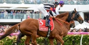 Tommy Berry and Curren Miotic at Melbourne Cup 2016