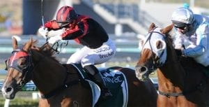 Apprentice jockey Tiffani Brooker