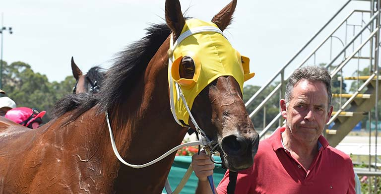 Victorian trainer Simon Morrish and horse Tonteria