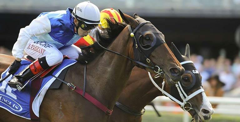 Inglis Villiers Stakes 2014