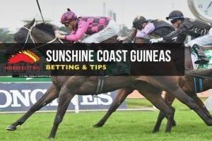 Sunshine Coast Guineas