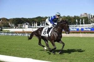 Queensland Derby winner Ruthven