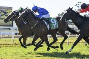 Cummings to embrace Godolphin challenge