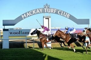 Seventh heaven as Cook's Conca conquers