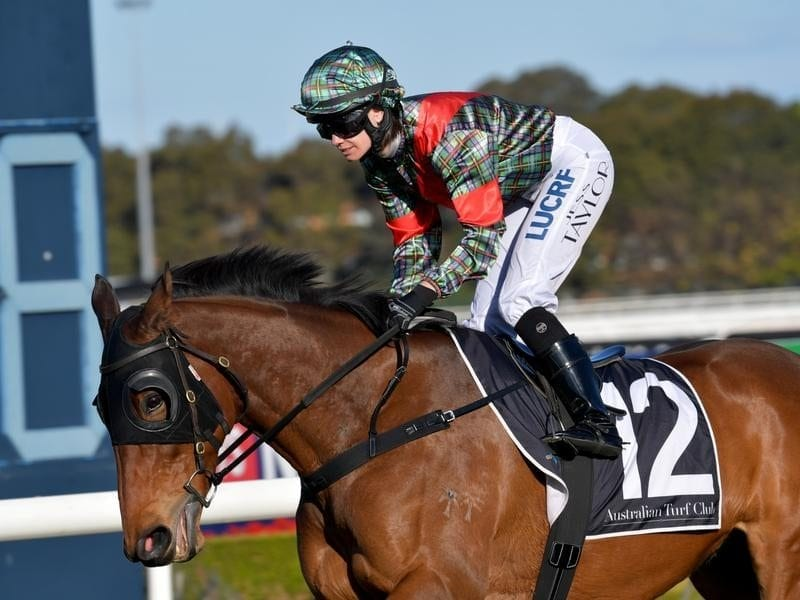 Jess Taylor on Slightly Sweet at the ATC Winter Stakes